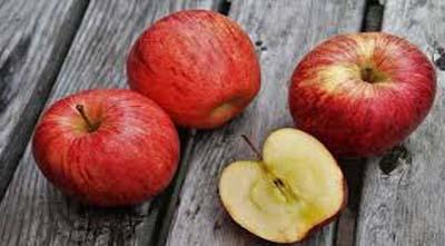 влияние кальция на лежкость яблок