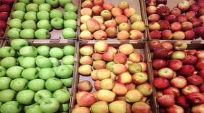 лежкость яблок и кальций