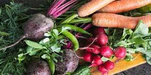 способы хранения овощей