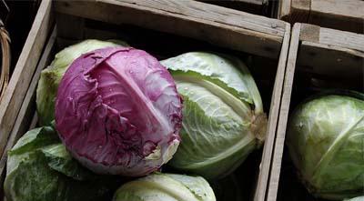 как сохранять овощи на зиму