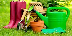 подобрать огородную и садовую технику