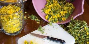 народные средства защиты овощей от вредителей